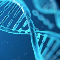 molecular-genetics-300